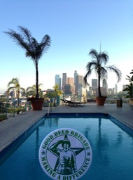 Good Deed Brigade Scenic View - Poolside - Los Angeles, California